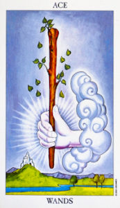 Heart-Given Connection Tarot Wands